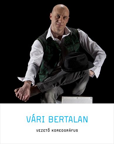 Vári Bertalan